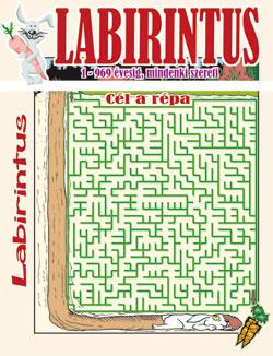 Labirintus - Maze - �tveszt�