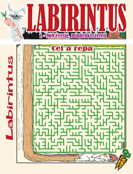 Kiadvány - LABIRINTUS